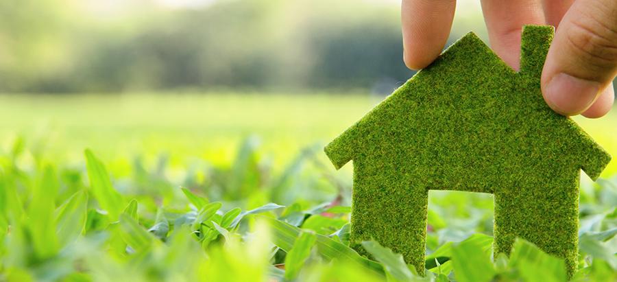 ECOBONUS casa: debutta il bonus del 36% per il verde